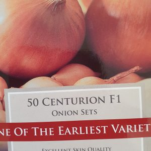 Centurion F1 Onion Sets