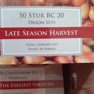 Stur BC 20 - Onion Sets